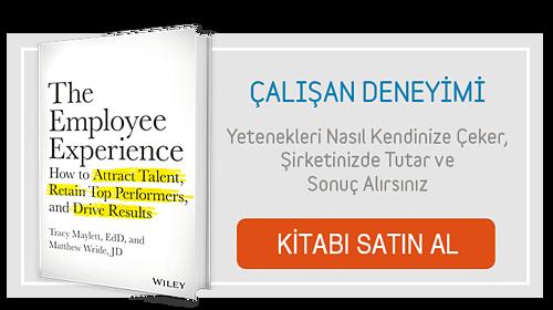 CTA-Çalışan Denetimi Kitabı